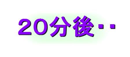 aoihito3.jpg